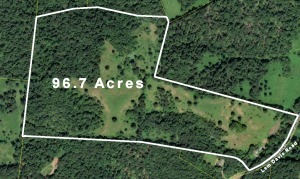 96.7 Acres - House & Mobile Home - Cunningham, TN